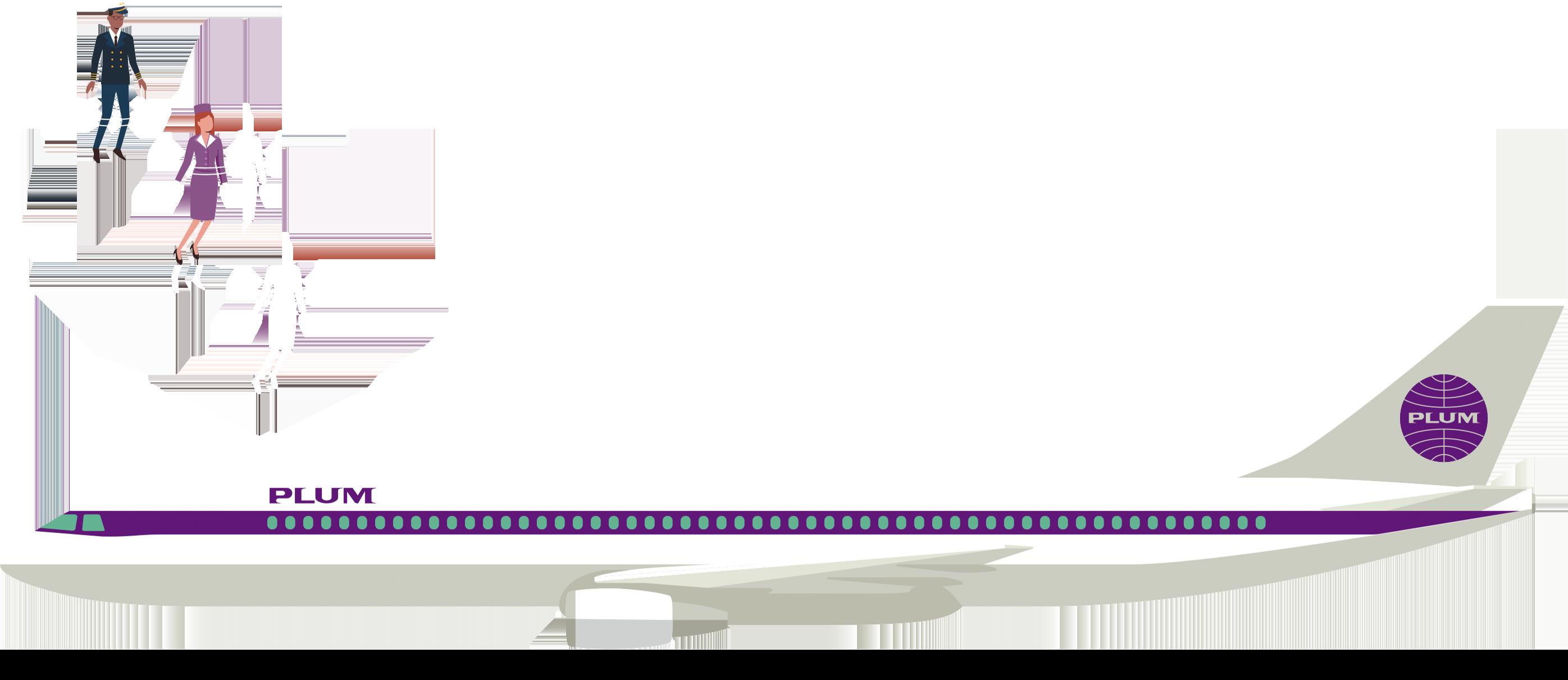 FY19Q4_plum_plane (1)